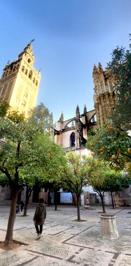 Seville Cathedral PORTRAIT STREET 1
